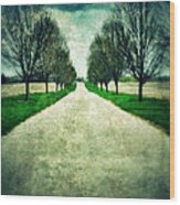 Road Lined By Trees Wood Print