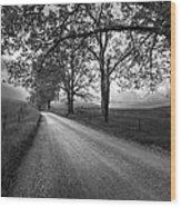 Road Not Traveled Wood Print by Jon Glaser