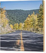 Road Of Color Wood Print