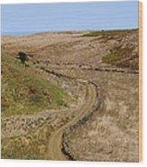 Road On Hierro Wood Print