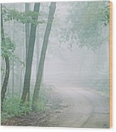 Road Passing Through A Forest, Skyline Wood Print