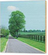 Road Passing Through Horse Farms Wood Print