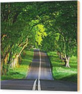Road Pictures Wood Print