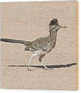 Road Runner On The Road Wood Print