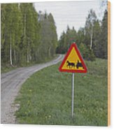 Road Sign With Carriage Wood Print by Ulrich Kunst And Bettina Scheidulin