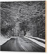 Road Through Dark Snowy Forest E93 Wood Print