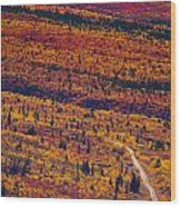 Road Through Fall Colored Tundra Wood Print