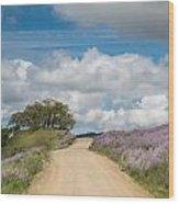 Road Through Lupine Wood Print