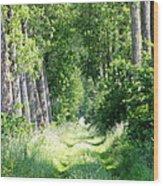 Road To Bruges Wood Print