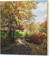 Road To Happyness Wood Print by Jocelyne Choquette