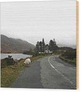 Road To Kenmare Ireland Wood Print