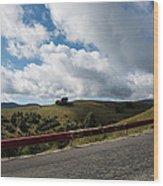 Road To Paltinis Wood Print
