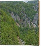 Road To Savnik - Montenegro Wood Print