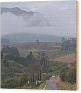 Road To Stellenbosch Wood Print