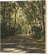 Road To The Enchanted Forest Wood Print