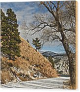 Road To The Lake Wood Print