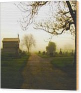 Road To The Mausoleum Wood Print