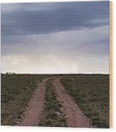 Road To The Rain Wood Print