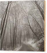 Road To Winter Wood Print