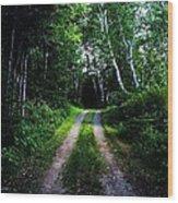 Road Trip- Back Country Road Wood Print
