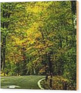 Road Trip Wood Print