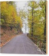 Road With Autumn Trees Wood Print