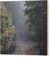 Roads 37 Wood Print