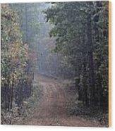 Roads 38 Wood Print