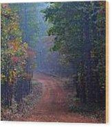 Roads 38b Wood Print