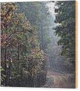 Roads 41 Wood Print