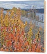 Roadside Reds Wood Print