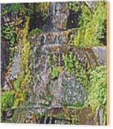 Roadside Waterfall. Mount Rainier National Park Wood Print