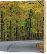 Roadway In Autumn In Brown County State Wood Print