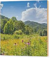 Roan Mountain State Park Wood Print