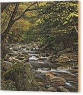 Roaring Branch Brook Wood Print
