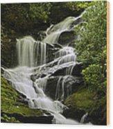 Roaring Creek Falls Wood Print