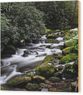 Roaring Fork Wood Print