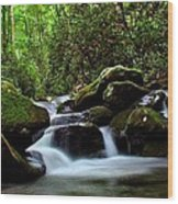 Roaring Fork Waters Wood Print