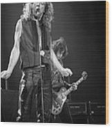 Robert Plant And Jimmy Page Wood Print