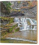 Robert Treman Waterfall Wood Print