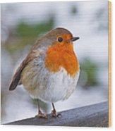 Robin Redbreast Wood Print