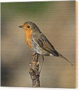 Robin Wood Print