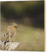 Robin On A Log Wood Print
