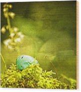 Robin's Egg On Moss Wood Print