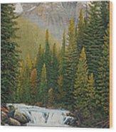 Robson River Falls Wood Print