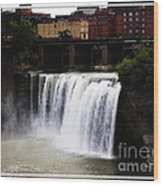 Rochester Ny High Falls Wood Print