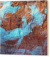 Rock Art 15 Wood Print