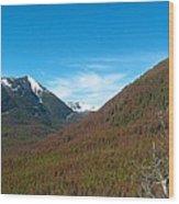 Rock Creek Drainage II Wood Print