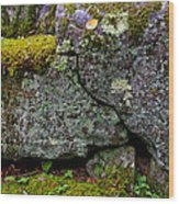 Rock Face With Moss Wood Print