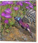 Rock Flower Birguana Fly Wood Print